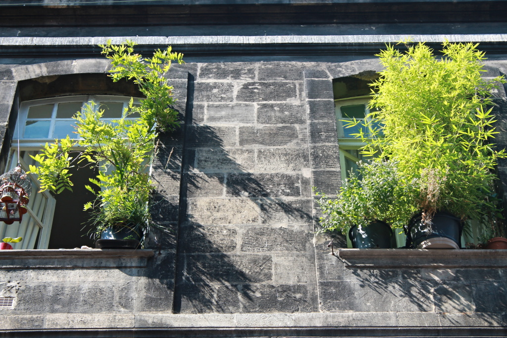 Bordeaux, Blumenfenster in der Altstadt