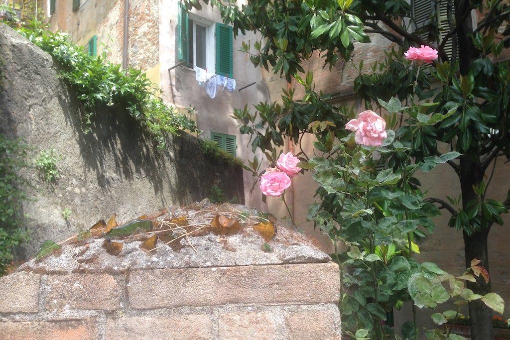 Perugia_011
