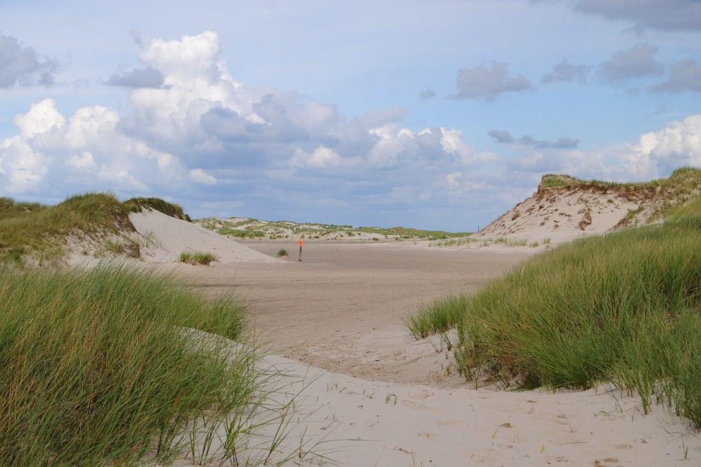 norderney-nordseite-dünen-landschaft