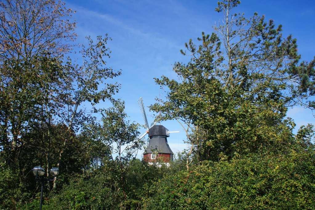 Da radelt man so durch den Wald und denkt sich nichts dabei – und passiert ein schönes Friesenhaus nach dem nächsten. Auch diese hübsche kleine Mühle habe ich hinter dichtem Baumbewuchs entdeckt.