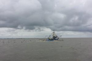 Krabbenkutter im Wattenmeer der Nordsee.