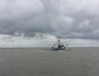 Nordsee Segeln 2/2 Watt'n Meer!