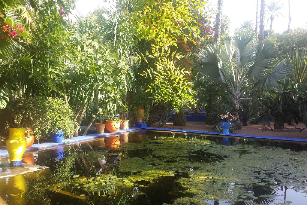 marrakesch-jardin-majorelle