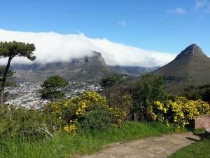 Drei aufregende Kapstadt-Ausflüge