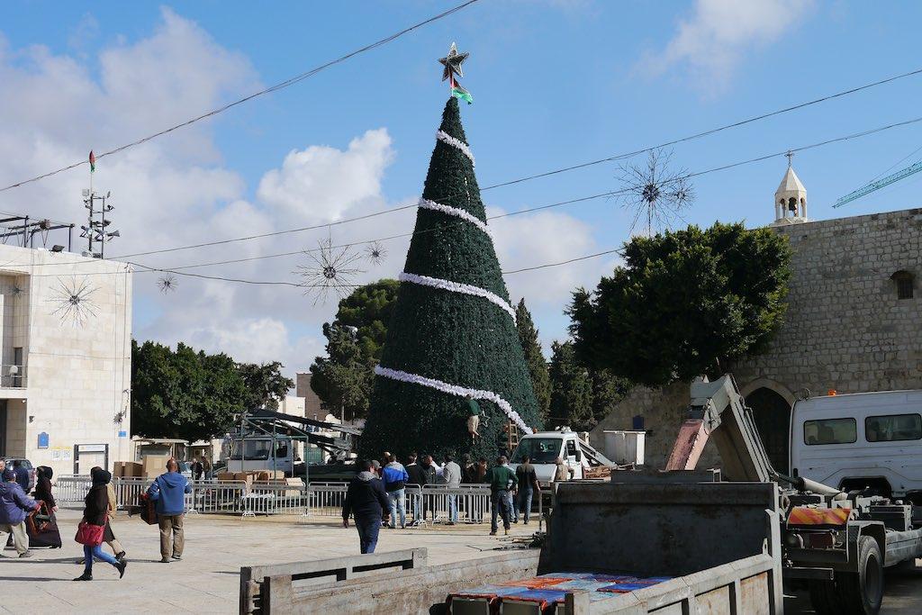 Auf dem Manger Square, dem Krippenplatz, von Bethlehem. Der Weihnachtsbaum mit einer weißen Girlande.