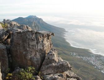 Kapstadt – Auf dem Tafelberg
