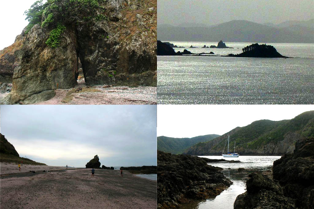NZ-collage-northland-bay-of-islands