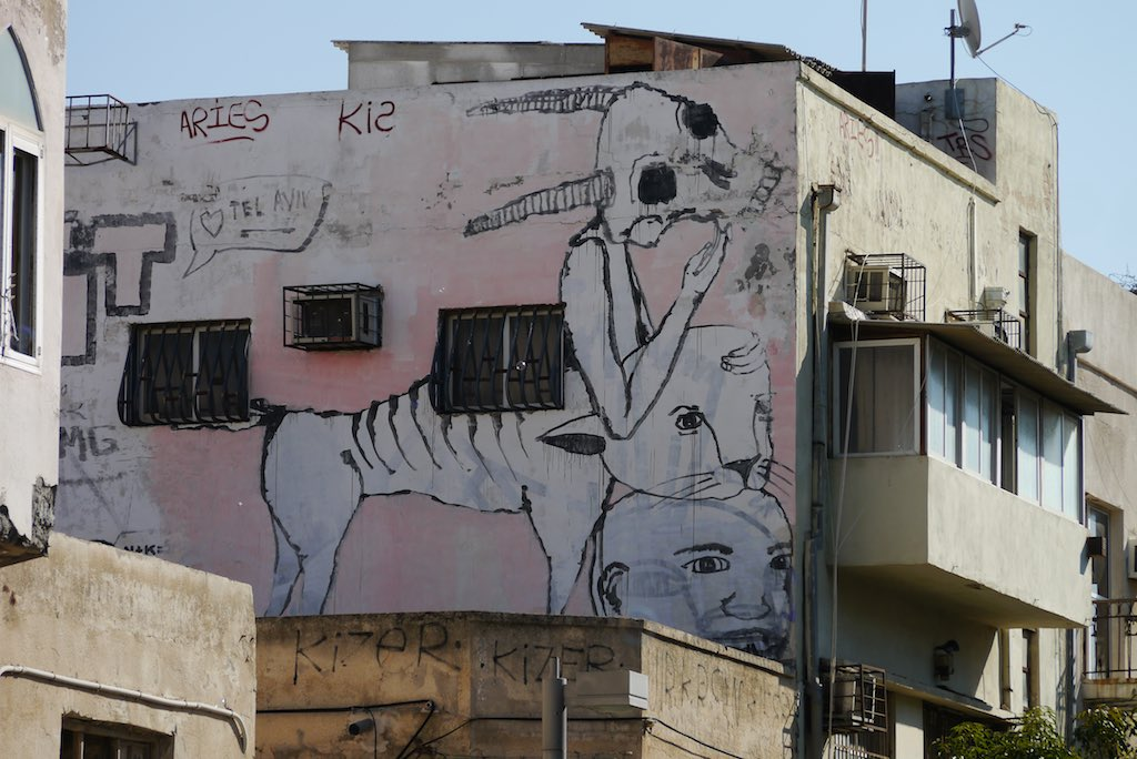 Streetart in Forentin. Auf einer rosa Hauswand ist ein Tiger gemalt.
