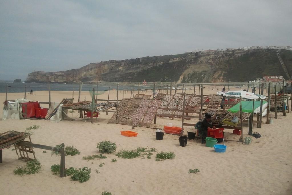 nazare-strand-fische-trocknen