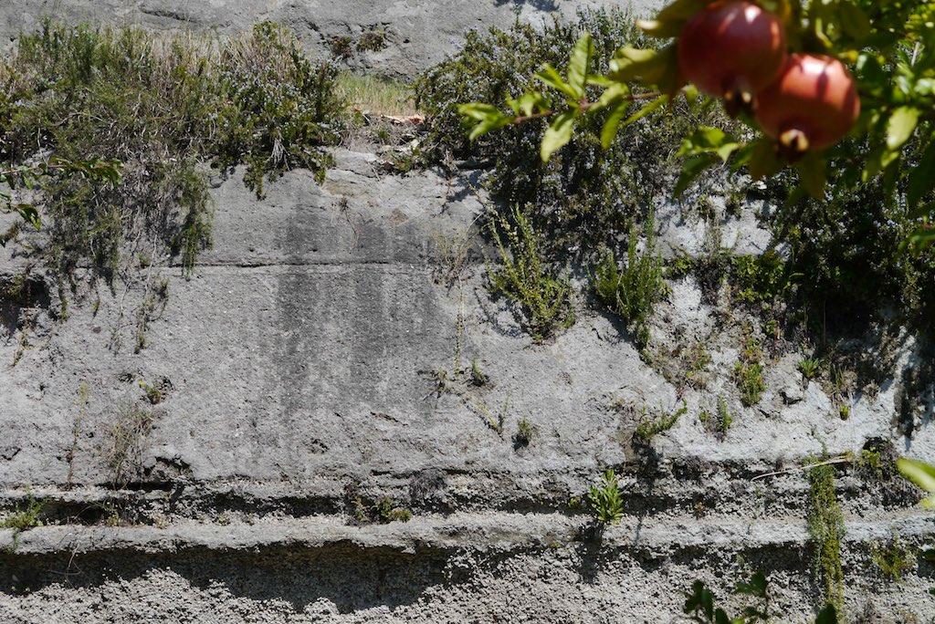 Vulkanische Asche und Bimssteine bilden das vulkanische Material, mit dem die Villa Oplaontis verschüttet wurde. Oben mit Rosmarien bewachsen. Im Vordergrund Grantäpfel