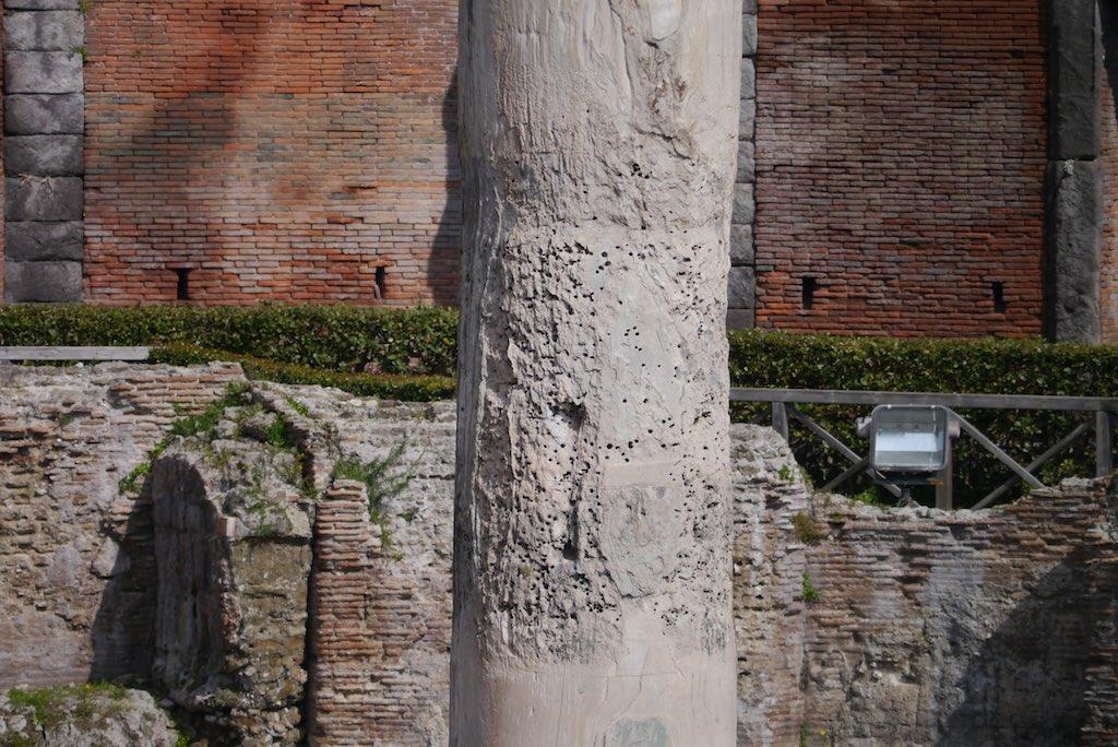 Eine Säule aus dem Macellum von Pozzuoli.