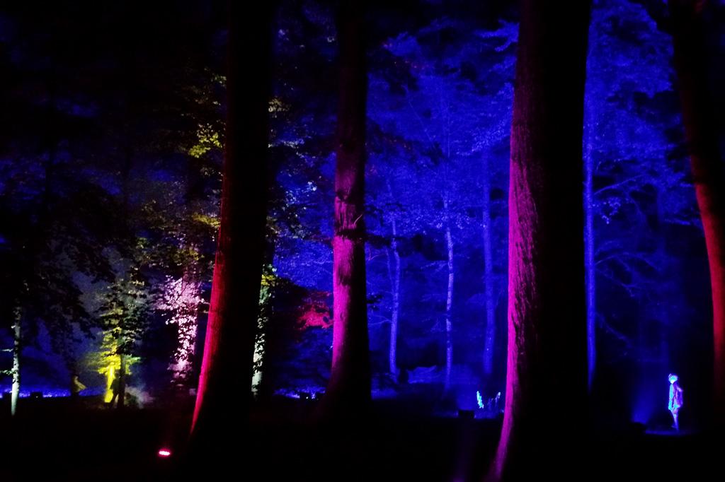 Ist das da eine Elfe? Das Licht im Park von Schloss Dyck kreiert Märchenstimmungen am laufenden Band.