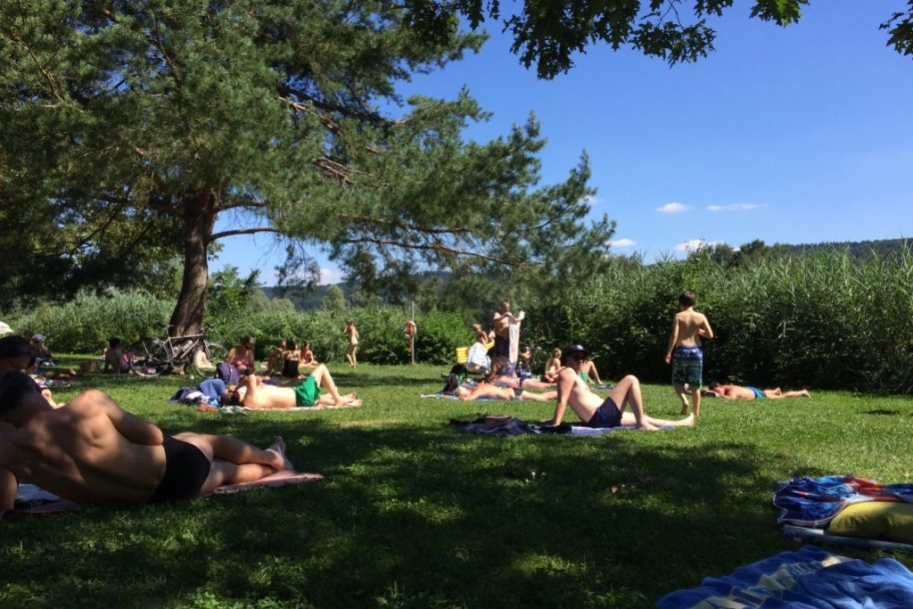 Liegewiese mit Bäumen und Schilf. Menschen in Badebekleidung. Szene von einem Badesee bei Stuttagrt.