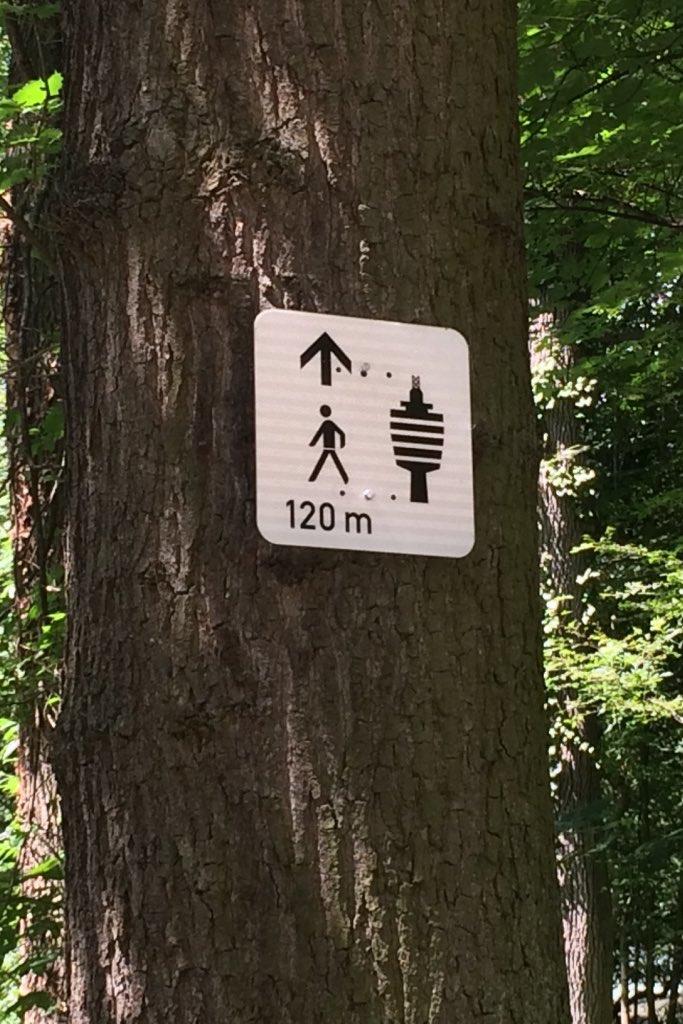 Wegweiser an einem Baum zum Fernsehturm von Stuttgart.