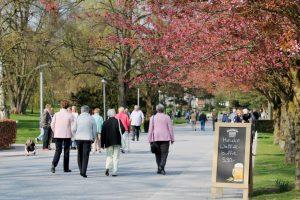 Der Kurpark von Bad Sassendorf mit Baumblüte und Waffel-Büfett