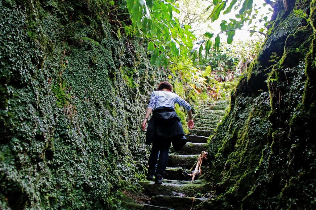 Wanderparadies Azoren: Manchmal möchten wir alle paar Minuten stehen bleiben, um die Bilder aufzusaugen.
