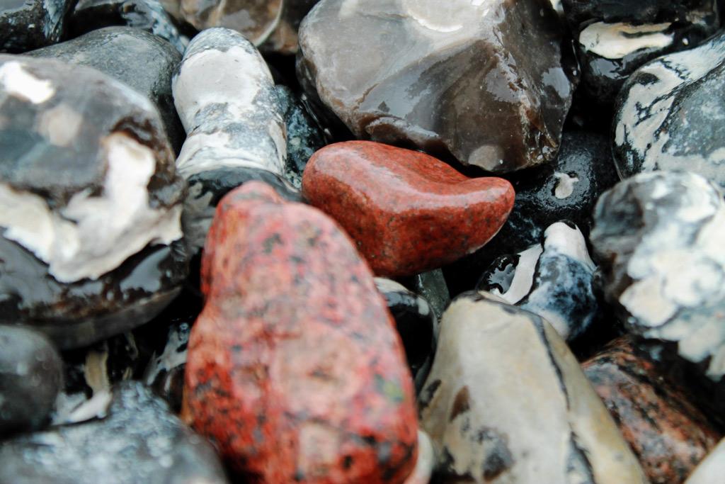 Stralsund: Stillleben mit Steinen: Auch en detail ist die Kreideküste einfach malerisch.