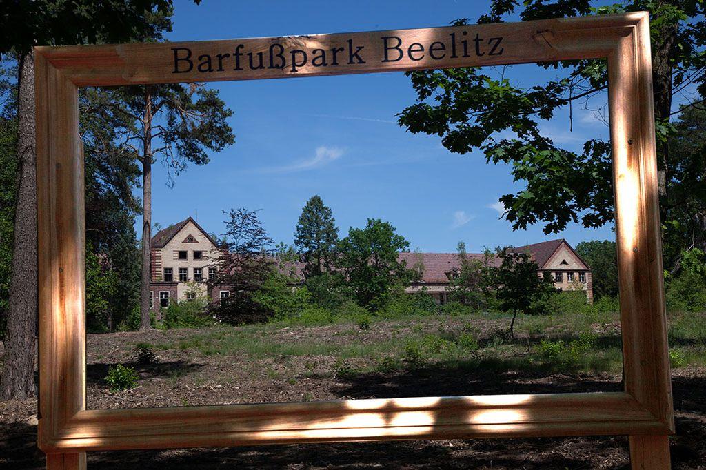 Ein Bilderrahmen in freier Natur auf dem Gelände der Beelitzer Heilstätten. Er ist so groß, dass er sich Besucher vom Barfußpark Beelitz vor der Ruine der Chirurgie ablichten lassen können.
