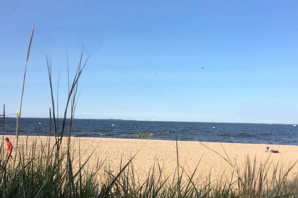 Strand am Stettiner Haff.