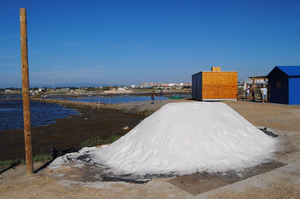 aveiro-salzgewinnung