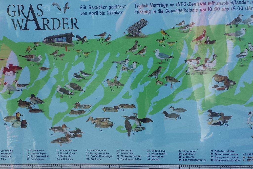 Nabu Karte für Heiligenhafen.