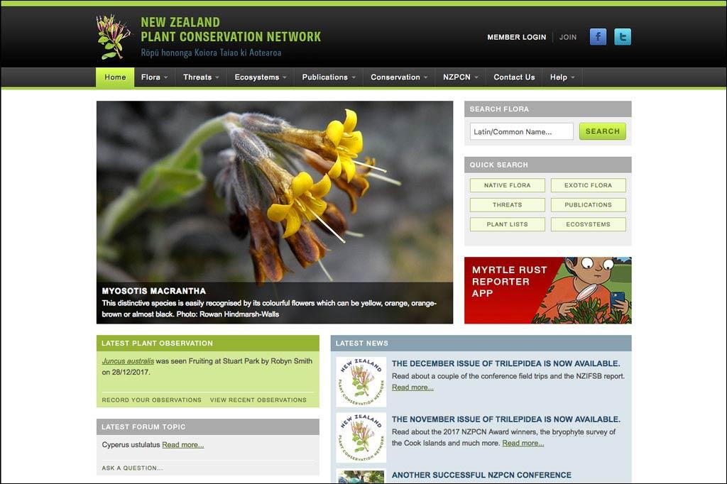 Screenshot der Website des Plant Conservation Network. Foto einer gelben Blume, daneben eine Suchmaske.