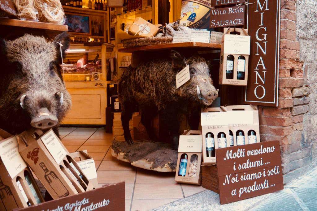 Zwei ausgestopften Wildschweine im Eingang eines Lebensmittelsgeschäfts in San Gimignano.