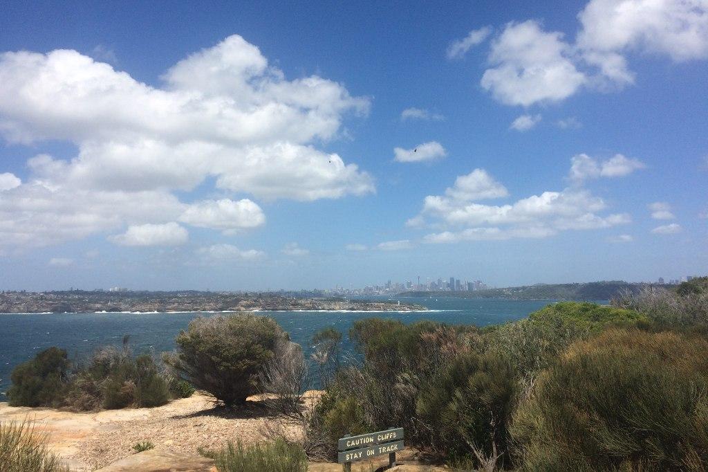 Der Naturhafen von Sydney. Im Hintergrund die Skyline der Stadt.