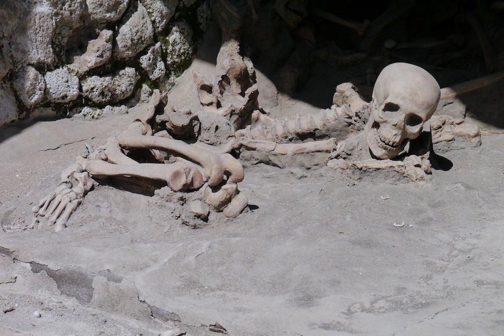 Ein Skelett aus Herculaneum. Die Beine sind angewinkelt. Der Kopf ist in die Höhe gereckt.