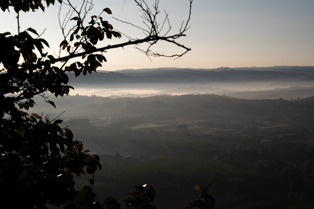 Adlerblick auf eine hügelige Landschaft. In den Tälern zwischen den Hügel hängen Nebelbänke, die wie zugefrorene Seen aussehen.