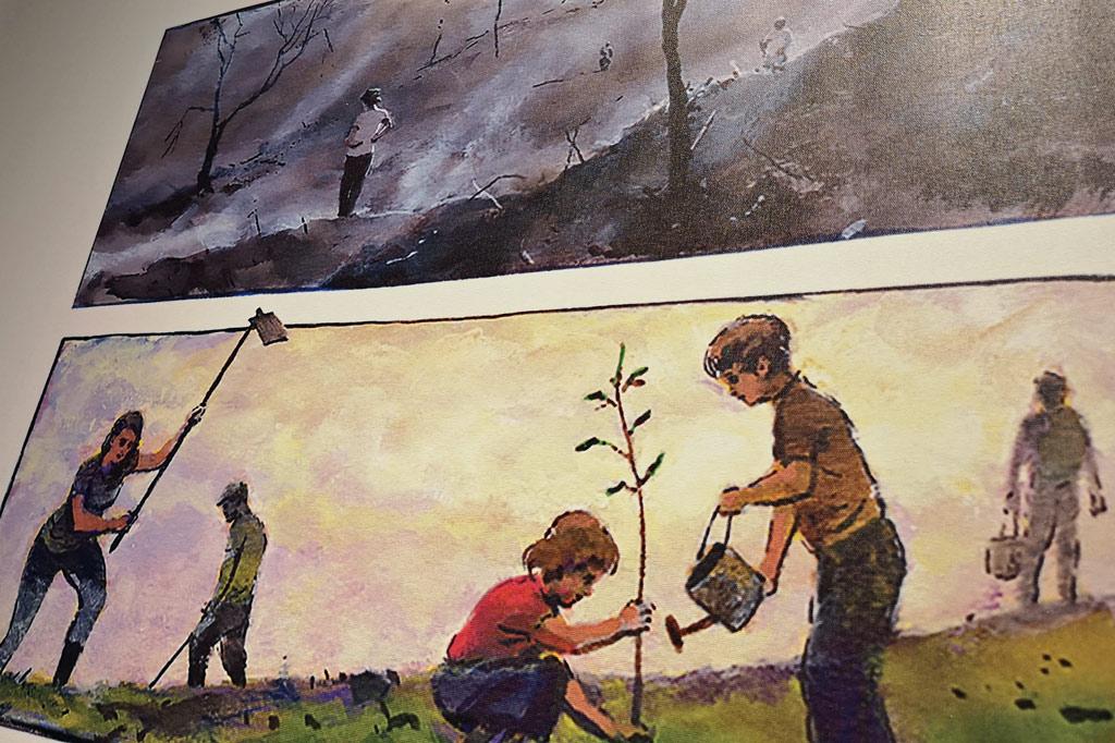 Ab aufs Land: Dorfkultur made in Portugal – Zeichnungen zeigen, wie Dörfer durch die Anpflanzung feuerresistenter Bäume gegen Waldbrände geschützt werden können.
