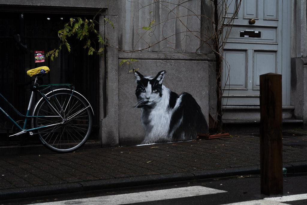 Nahaufnahme einer Fassade und des Bürgersteigs. An die Hausfassade ist eine schwarz weiße Katze gemalt, die den Berachter anstarrt. Links ist ein Fahrrad angelehnt.