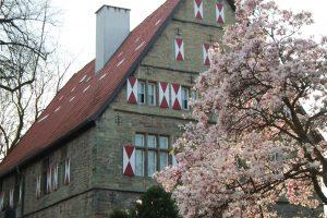 Blühender Baum vor dem Burghofmuseum, das in einem Renaissance-Patrizierhaus aus dem 16. Jahrhundert logiert, aus: Stadtspaziergang: Soest im Frühling Stadtspaziergang: Soest im Frühling