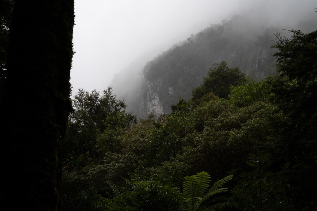 Nebel in den Bergen rund um den Milford Sound.