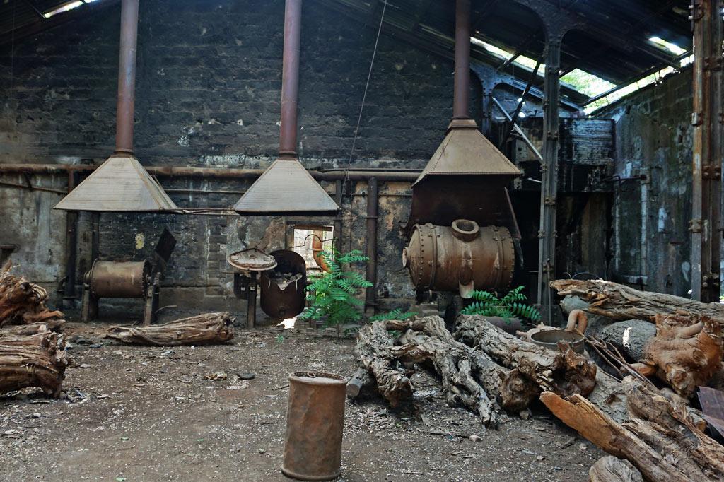 Hier wurde schon freigeräumt und gerodet: gestapelte Baumstämme in der Gießerei der ehemaligen Eisenbahn Fabrik