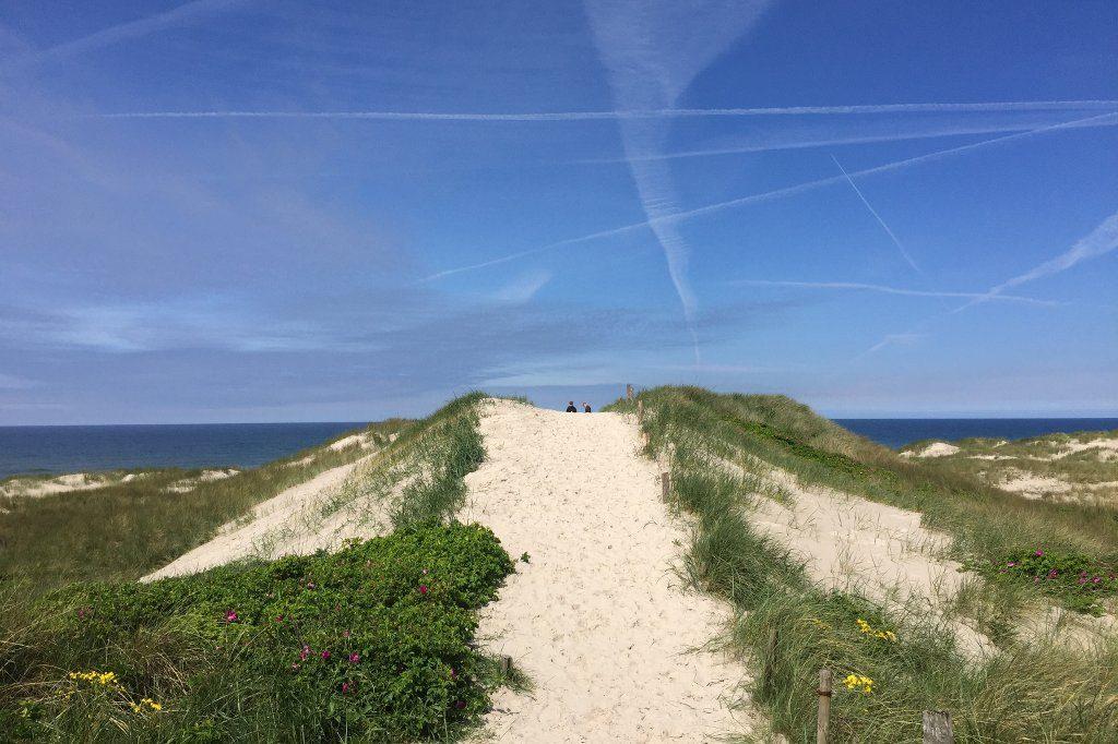 Dünenübergang vor blauem Himmel mit Kondensstreifen bei Hennestrand in Südwestjütland
