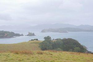 Das Bild zeigt im Vordergrund eine grüne Wiese. Der Himmel ist mit Wolken verhangen. Das Bild zeigt die Küstenlandschaft der Bay of Islands mit einer unregelmäßigen Küstenlinie und vielen kleinen Inseln