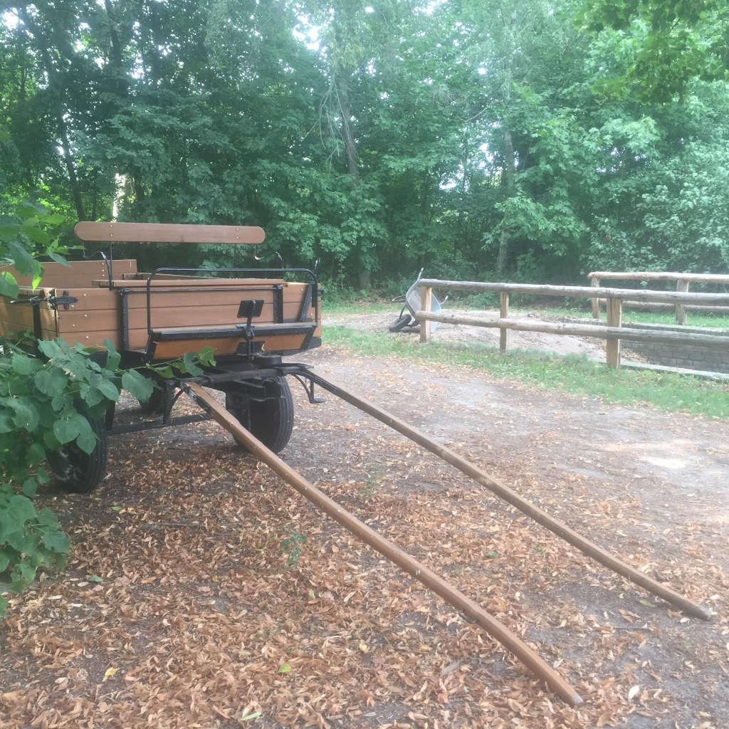 Ein Pferdespann aus braunem Holz steht inmitten einer Wald- und Wiesen-Umgebung.