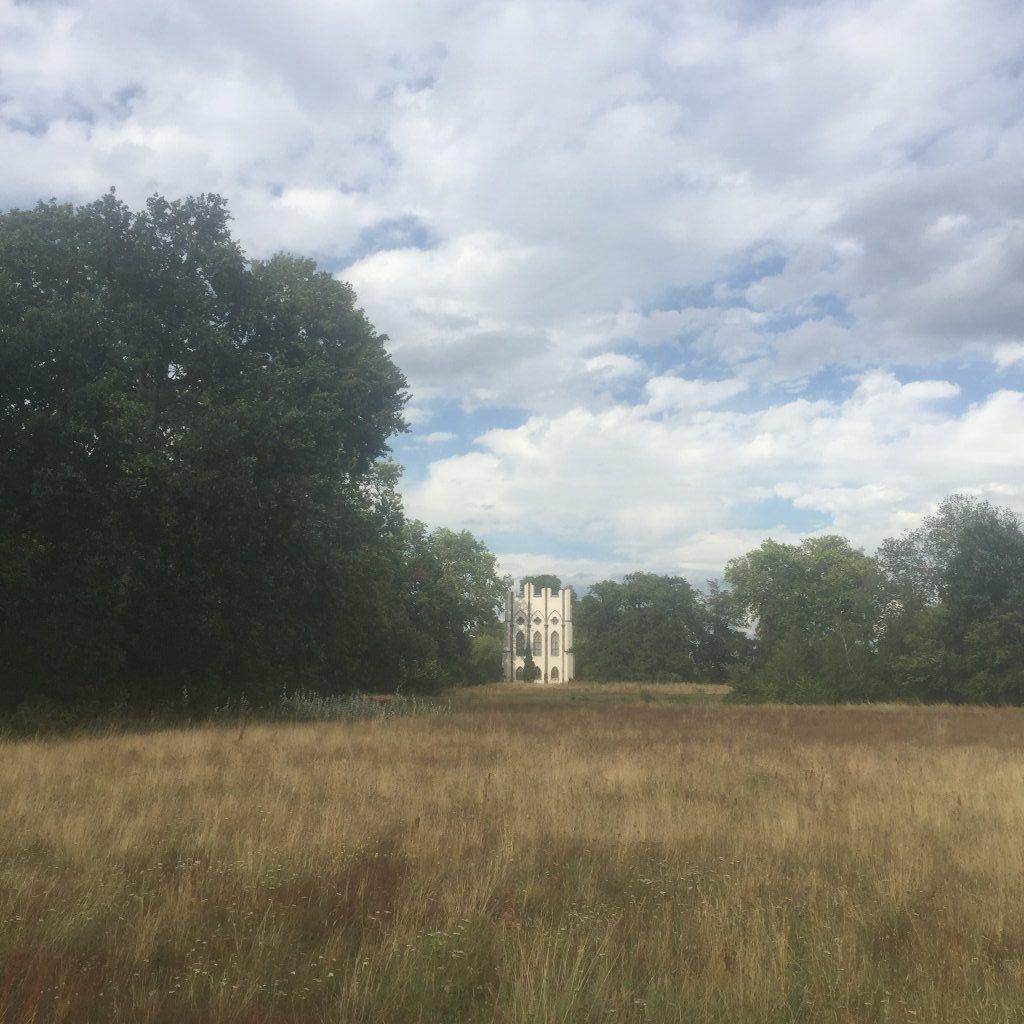Ein Blick über eine ungemähte Wiese. Links rahmen hohe Bäume das Bild, rechts etwas niedrigere, in der Mitte blitzt ein weißes Gebäude auf.