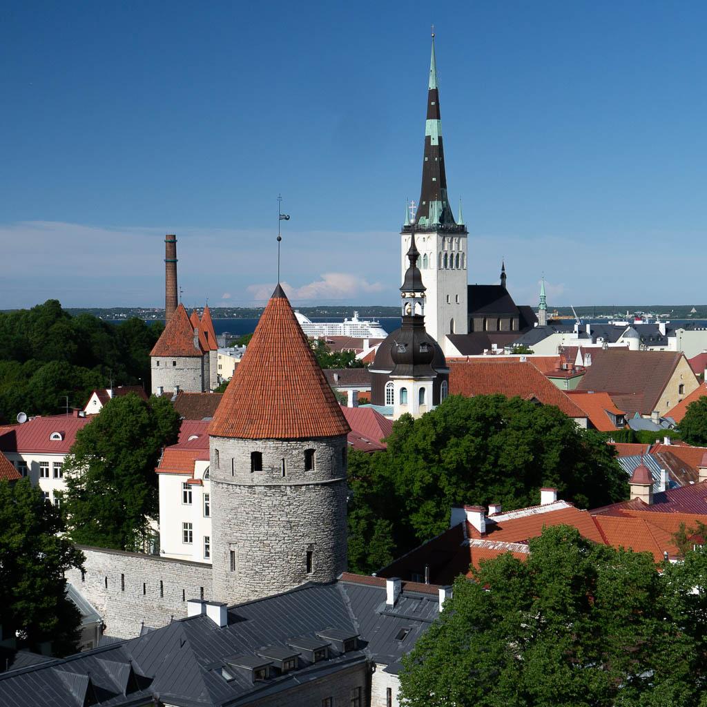 Blick vom Domberg hinunter auf die Unterstadt von Tallinn. Im Hintergrund blauer Himmel und ein Streifen Meer, davor Stadtmauer, Kirchtürme und Dächer. Dieser Ausblick ist ein echter Tallinn Tipp.