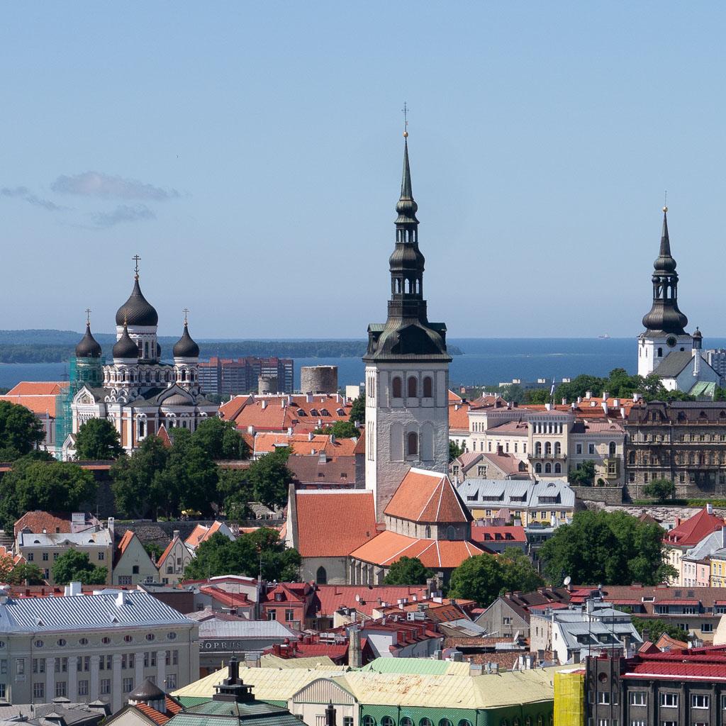 Blick über die Dächer von Tallinn.