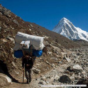 Sherpa im Himalaya mit schwerer Last, aus: Tourismus und Menschenrechte – egal oder nicht?