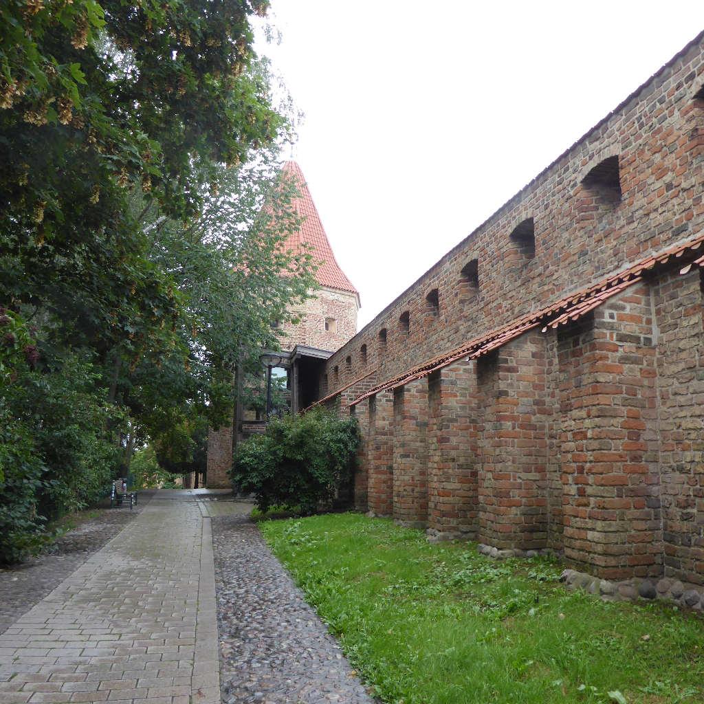 Ein Spazierweg zwischen Bäumen und rotgeziegelter Stadtmauer in Rostock.