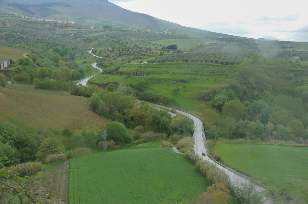 Ein Straße schlängelt sich durch die Hügel der Basilikata. Bei Venosa wachsen Wein und Oliven in kleinen Feldern.