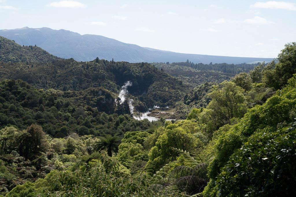 Blick über das Waimangu Volcanic Valley in Neuseeland.