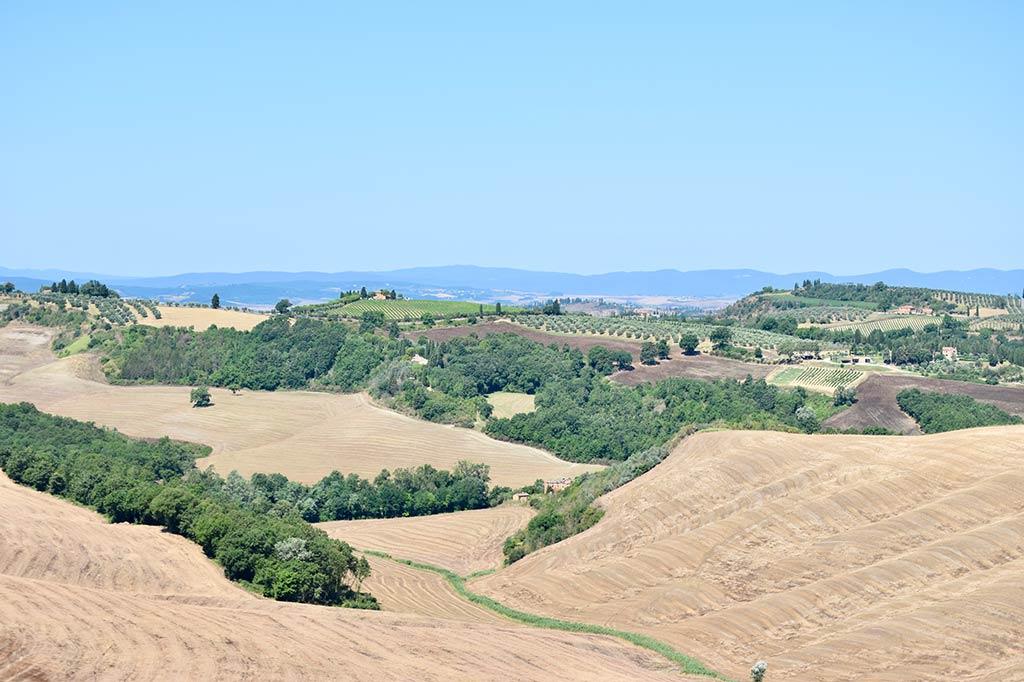Lehmhügel der Crete Senesi.